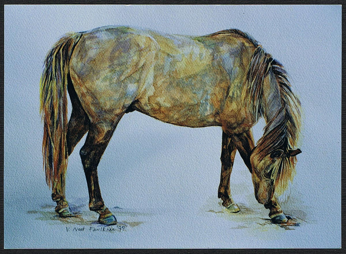 Horse portrait - Kansas City Artist