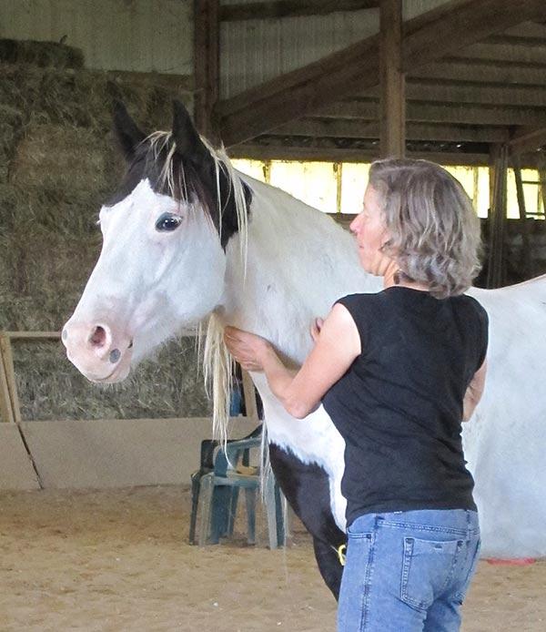 Vivian Kallmann - Animal Communicator in Kansas City